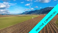 Sumas Prairie Agri-business for sale:    (Listed 2017-06-22)
