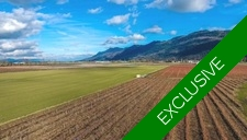 Sumas Prairie Other for sale:    (Listed 2017-11-28)